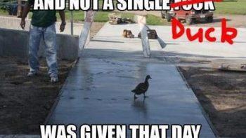 lol-not-a-single