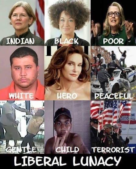 liberal-lunacy