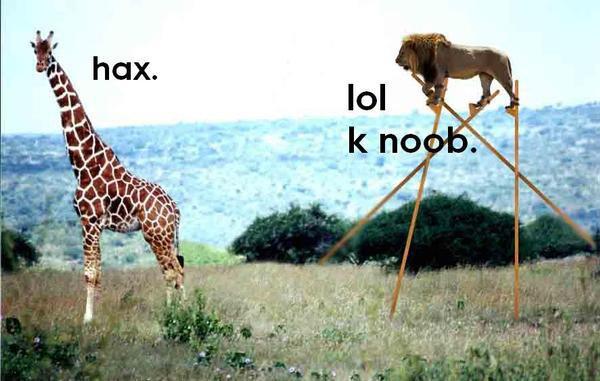 lol-k-noob