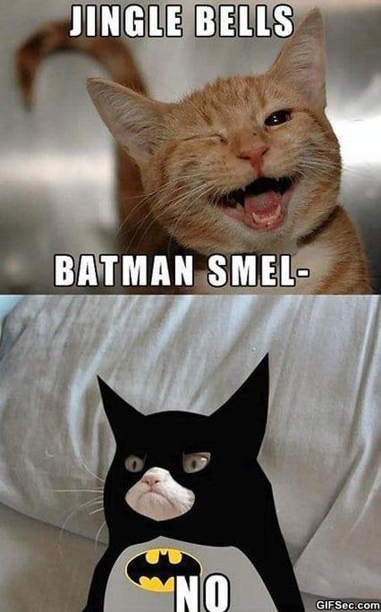 meme-grumpy-batman
