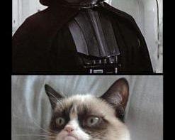 meme-grumpy-cat-vs-the-dark-side