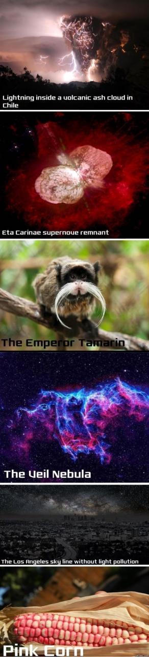 science-meme