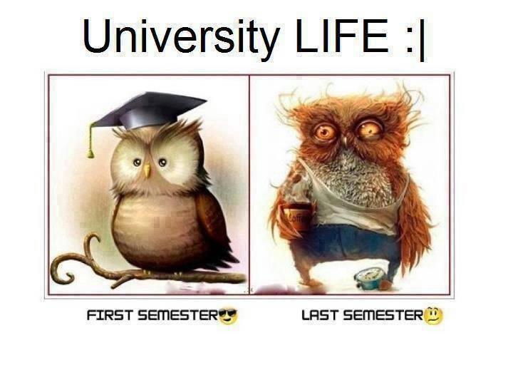 university-life