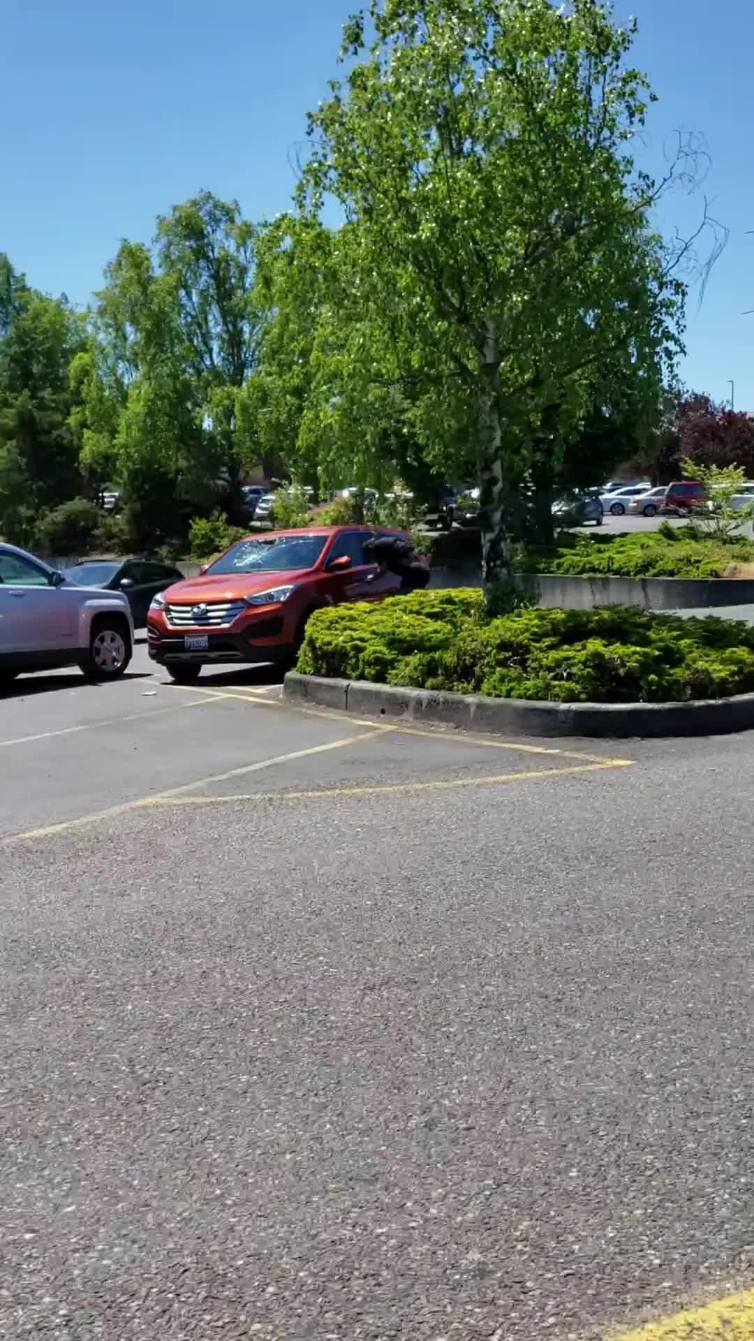 Peculiar Behavior in Parking Lot