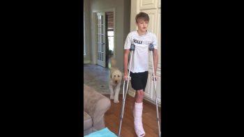 Dog Perfectly Mocks Teenager