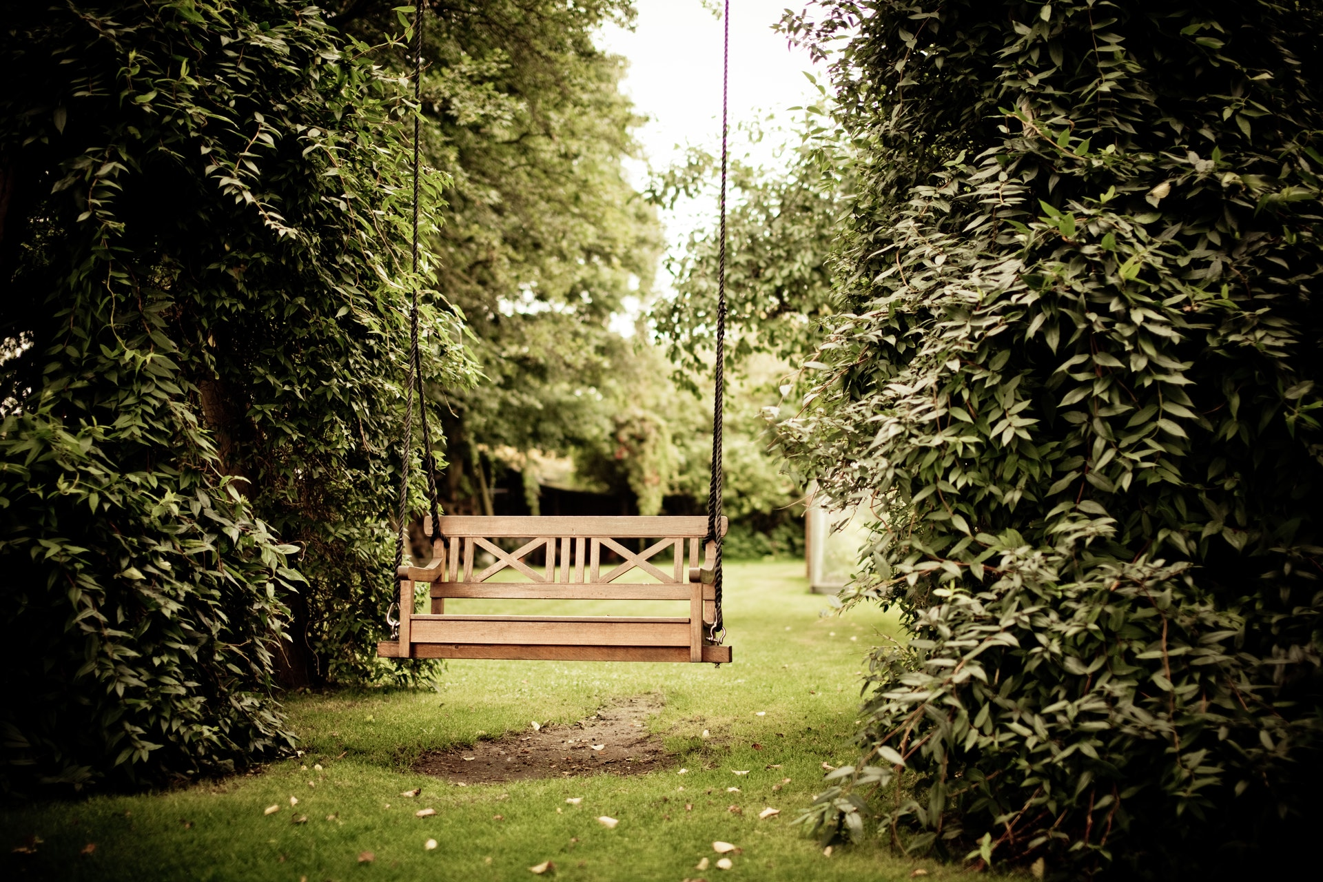 a garden swing