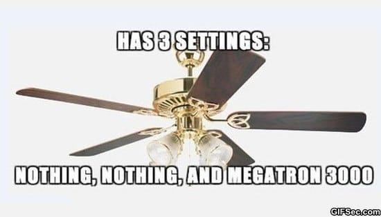 fan-meme-funny-pictures