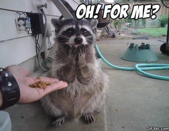 surprise-meme-funny-pictures