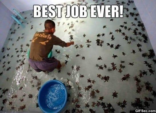 awesome-job