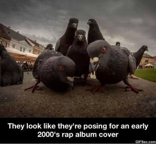 rap-album-cover