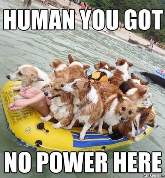 you-have-no-power-here