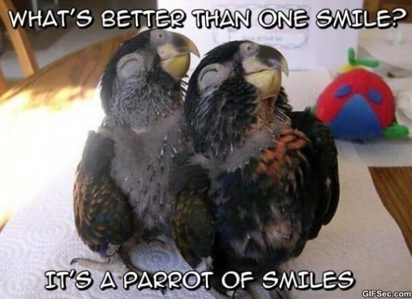 november-meme-lol-2013-smiles-600x436
