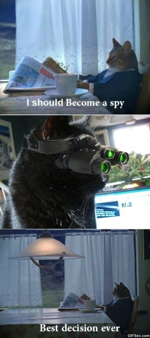 i-should-become-a-spy