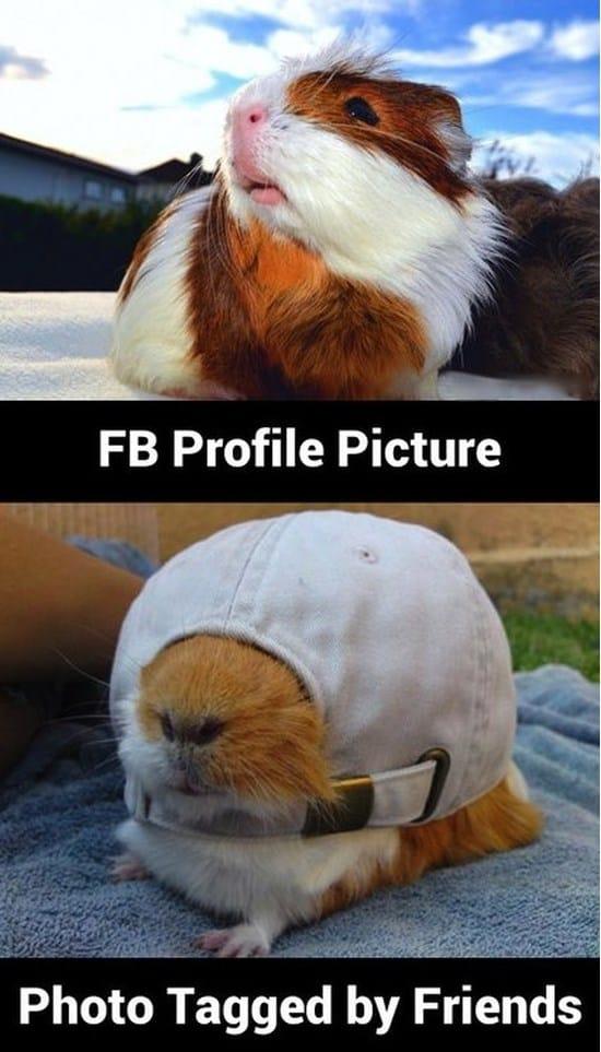 fb-profile-picture