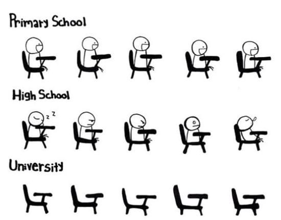 primary-school-vs-high-school-vs-university