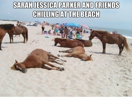 Sarah Jessica Parker 1