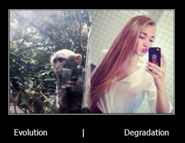 evolution-funny