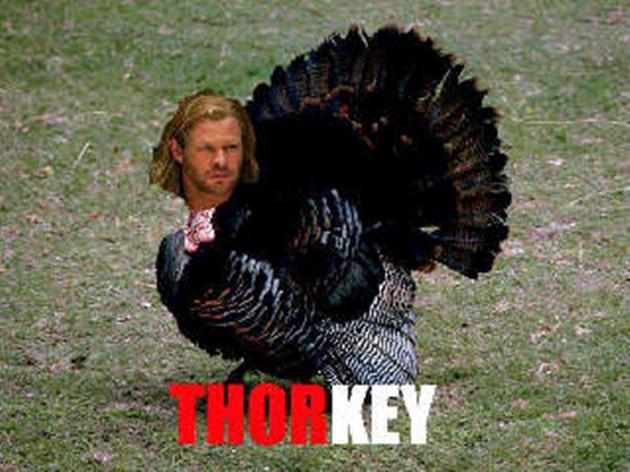 thorkey-funny