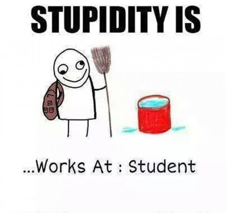 stupidity-is-funny