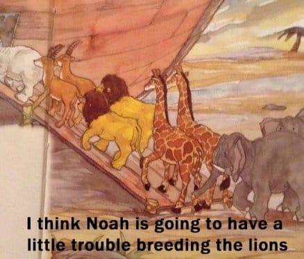 Noah's gonna have a little trouble
