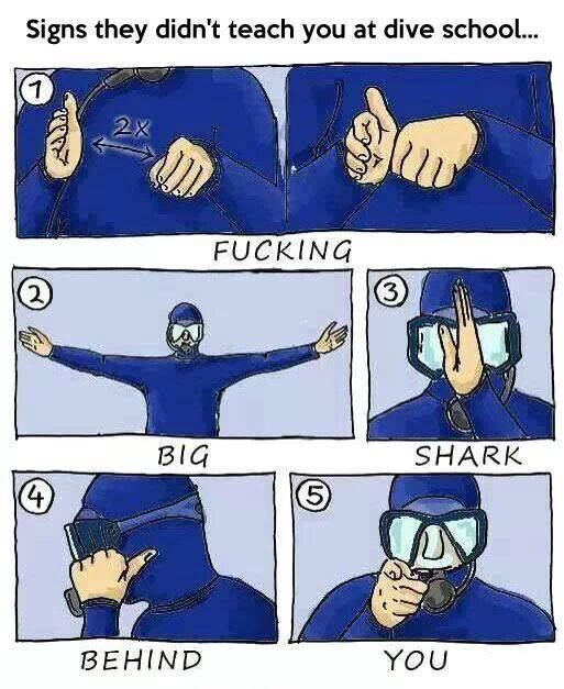 Signs they didn't teach you at dive school