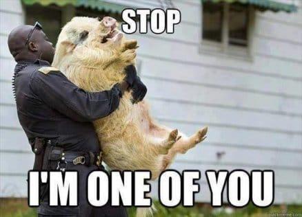 stop-lmao