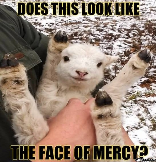 funny-face-of-mercy-lol