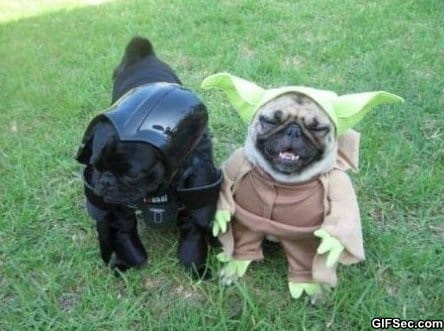 yoda-and-darth-vader