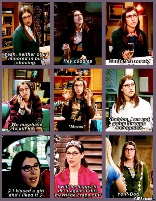 Amy Farrah Fowler   The Big Bang Theory