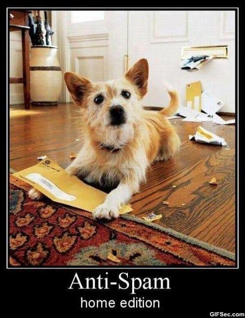 anti-spam-meme