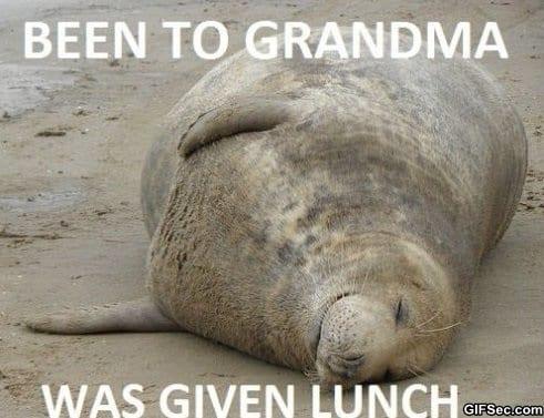 been-to-grandma