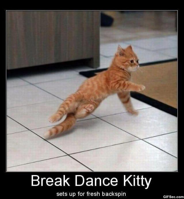 break-dance-kitty