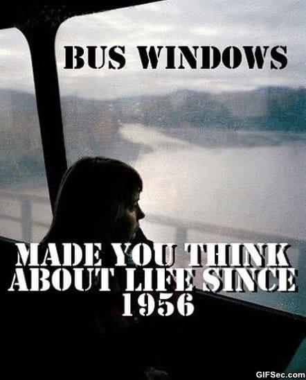 bus-windows