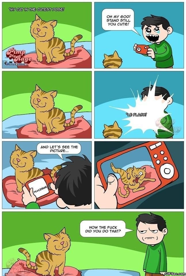 comics-cats-work-in-mysterious-ways