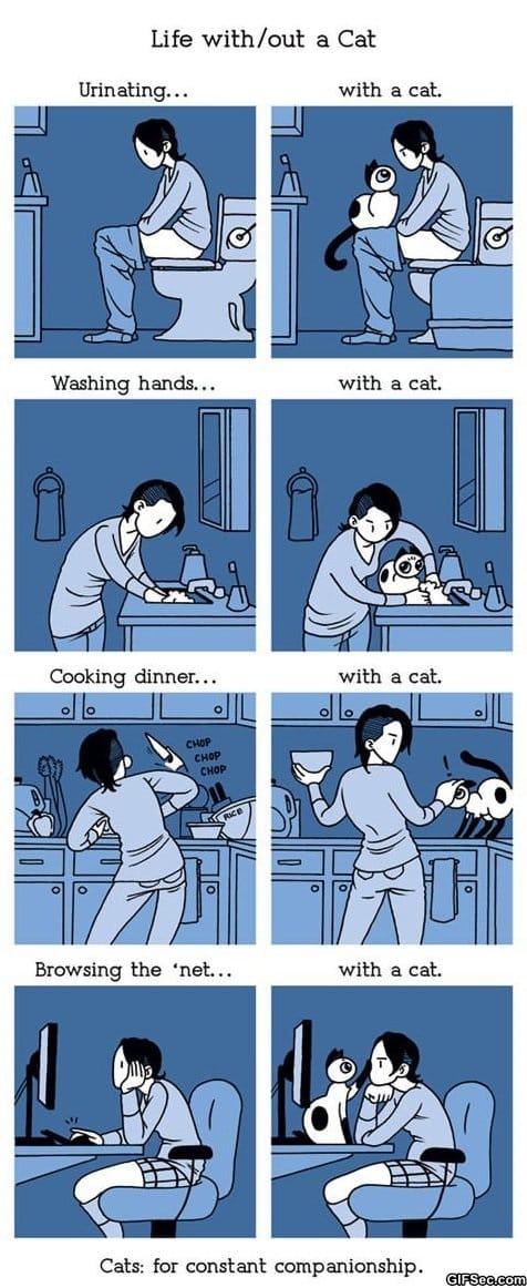 comics-life-with-a-cat