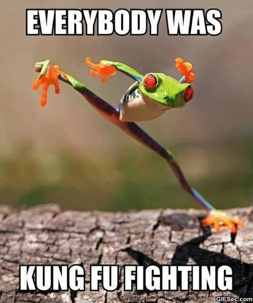 kung-fu-fighting