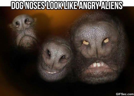 funny-aliens