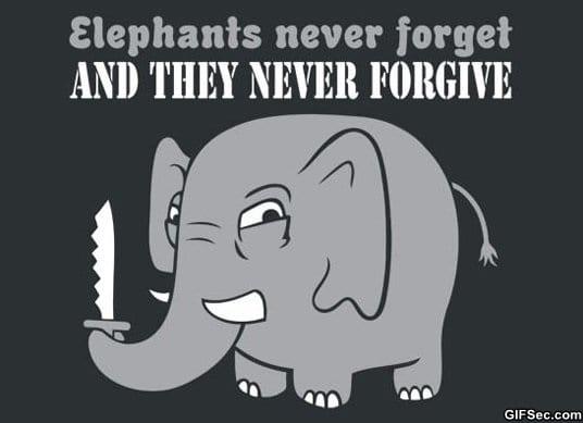 funny-elephants