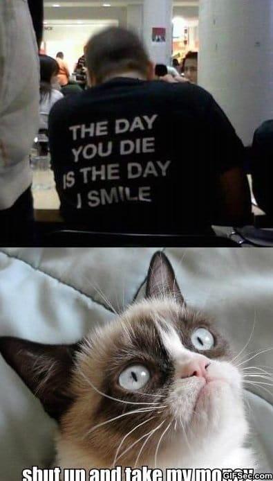 funny-grumpy-cat-is-amazed