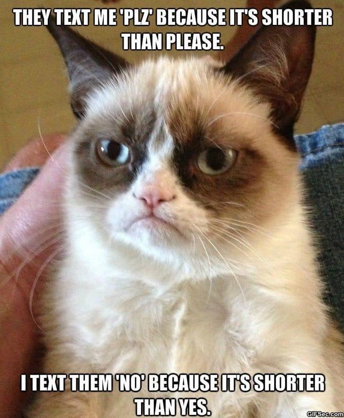 funny-grumpy-cat