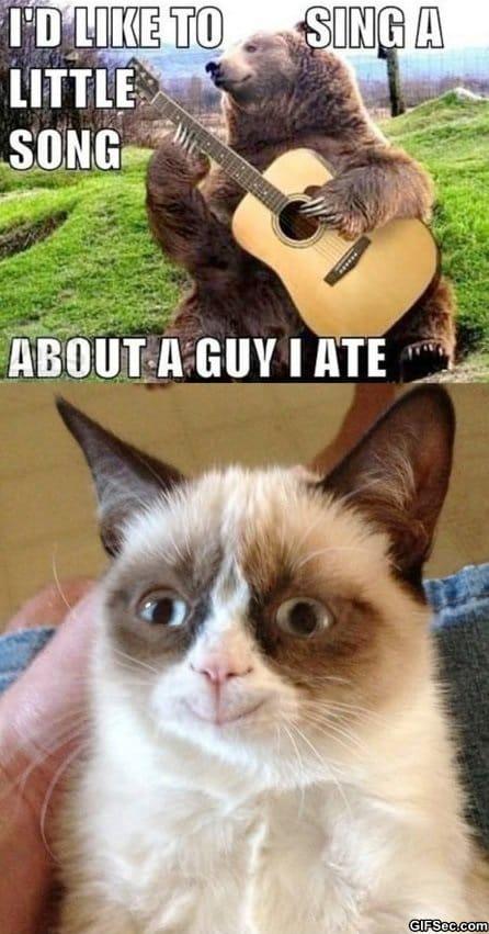 funny-happy-grumpy-cat