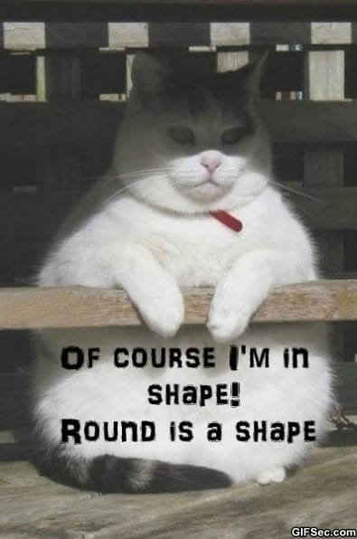 funny-in-shape