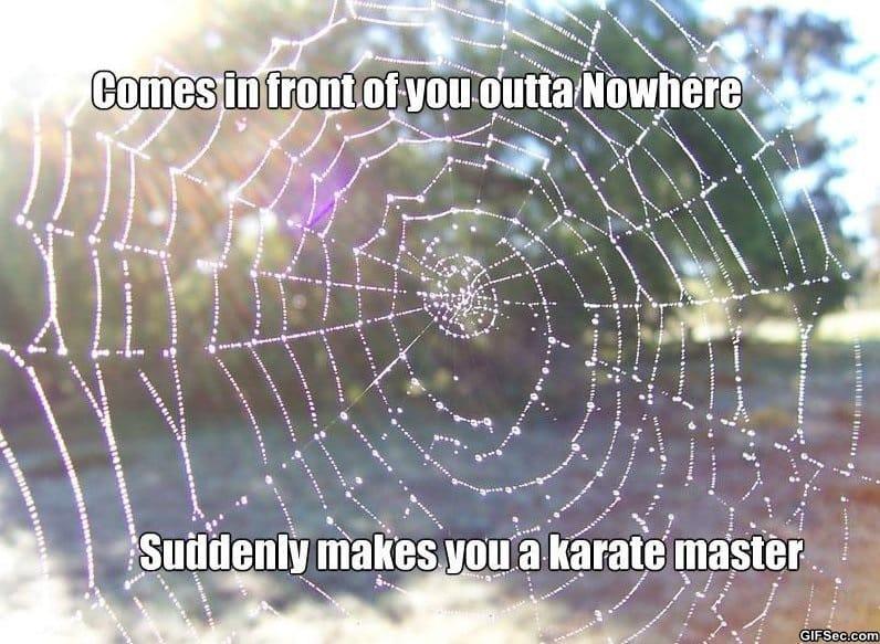 funny-karate-master