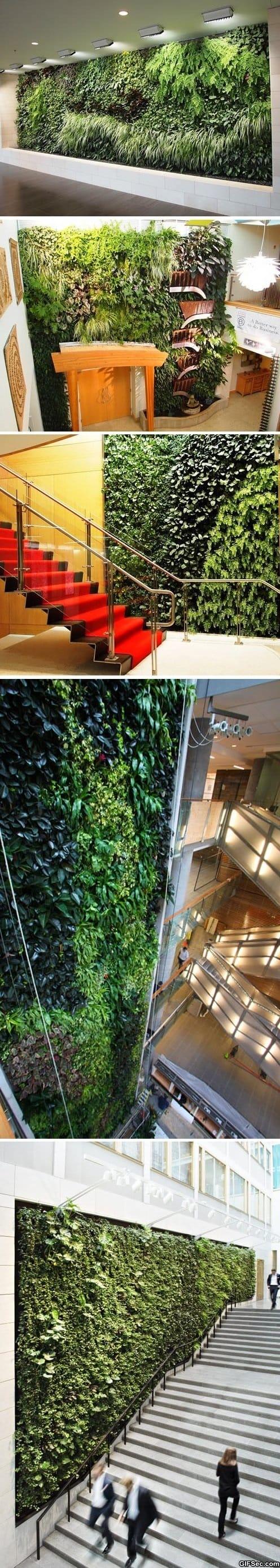 funny-living-walls-art