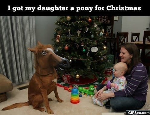 funny-pictures-best-present-ever
