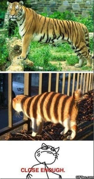 funny-pictures-close-enough