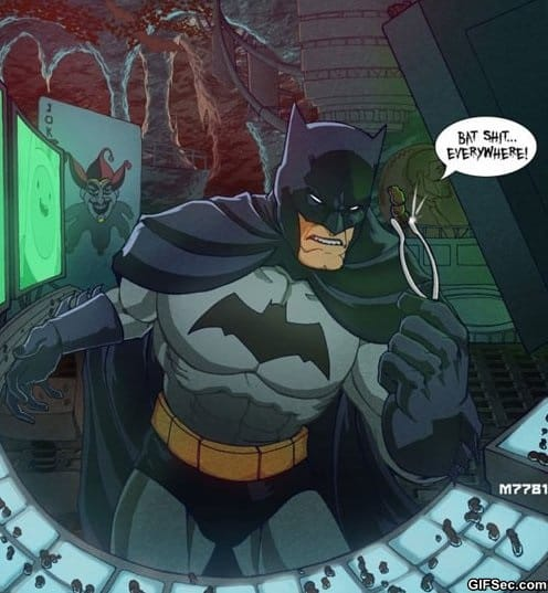 funny-pictures-downside-of-having-a-batcave