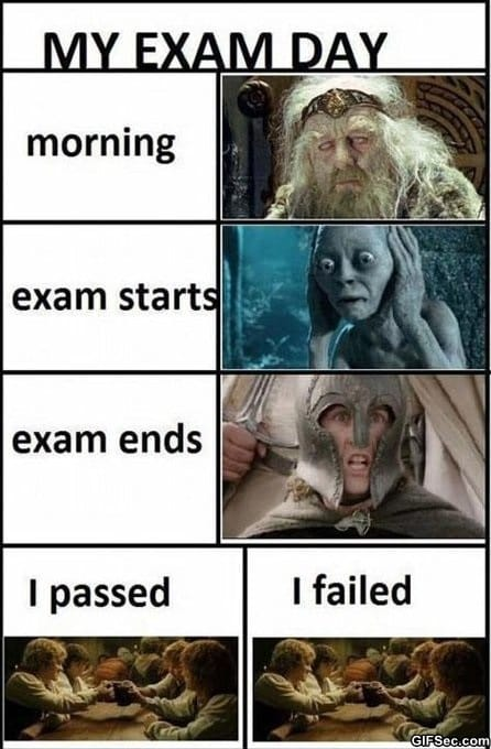 funny-pictures-exam-day