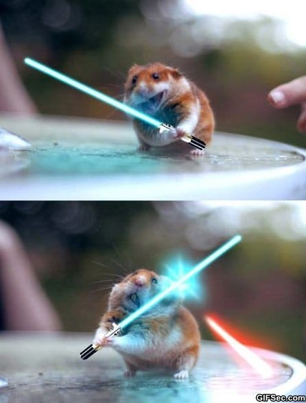 funny-pictures-jedi-hamster