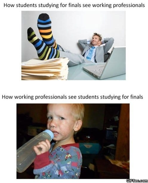 funny-pictures-students-vs-working-professionals